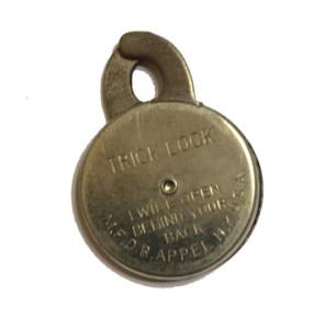 bashful_lock350